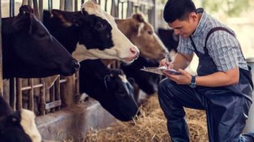 Recruitment For Herds Person In Canada